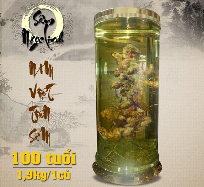 Rượu ngâm Sâm Ngọc Linh 100 năm tuổi thể hiện sự sang trọng