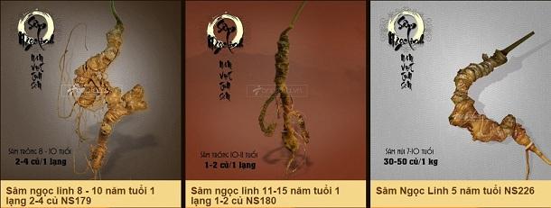 dia-chi-tin-cay-mua-sam-ngoc-linh-3