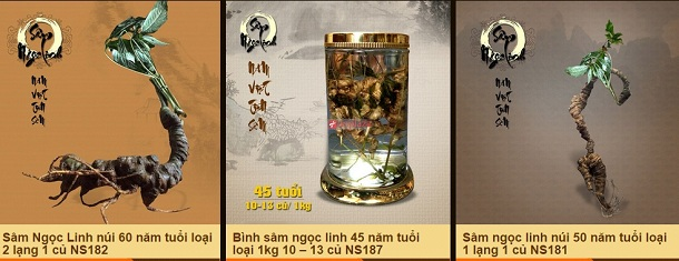 dia-chi-tin-cay-mua-sam-ngoc-linh-8
