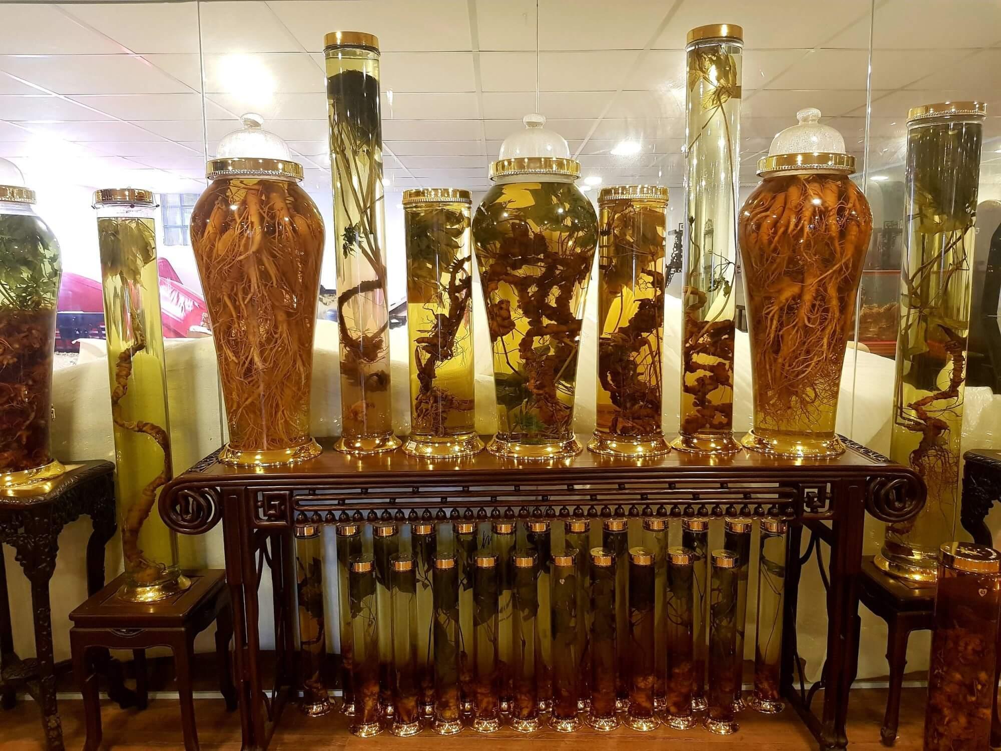 Một số hình ảnh về sản phẩm bình rượu sâm Ngọc Linh đẹp