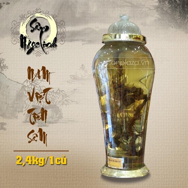 Bình Sâm Ngọc Linh (loại 2,4kg/1 củ)
