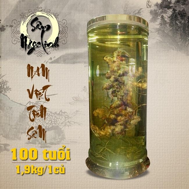 Bình sâm ngọc linh 100 năm tuổi (loại 1,9kg/1 củ)