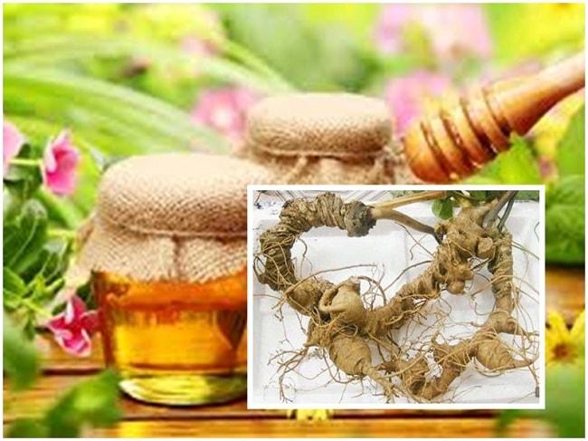 Cách uống sâm Ngọc Linh mật ong giúp tăng sức đề kháng