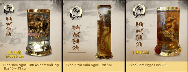 Một số loại bình ngâm sâm Ngọc Linh với nhiều kiểu dáng, chủng loại và niên đại sâm khác nhau