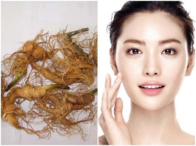 Phương pháp chống quá trình lão hóa da với sâm Ngọc Linh