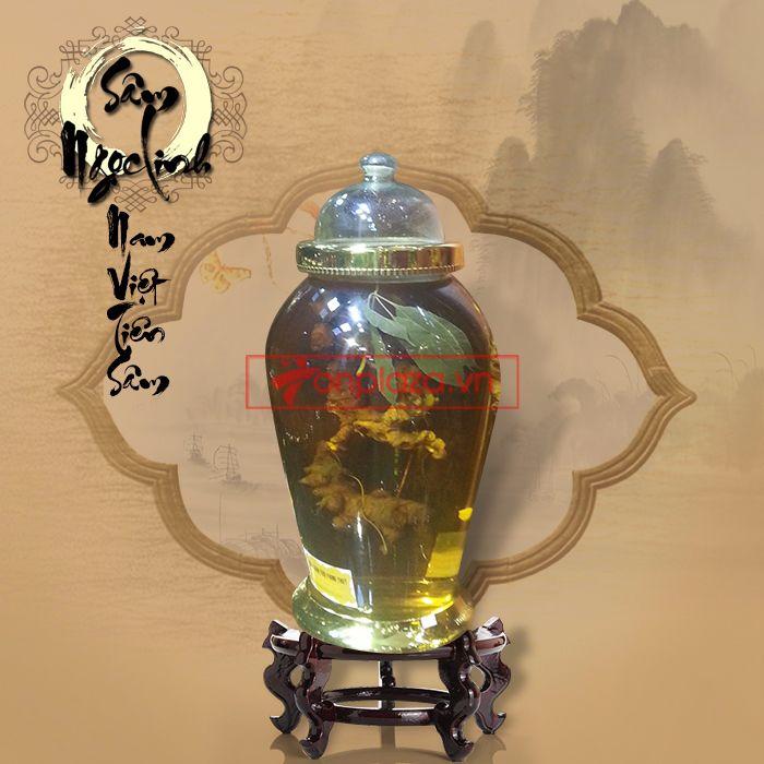 Bình sâm ngọc linh dáng tùng 9 lạng/củ