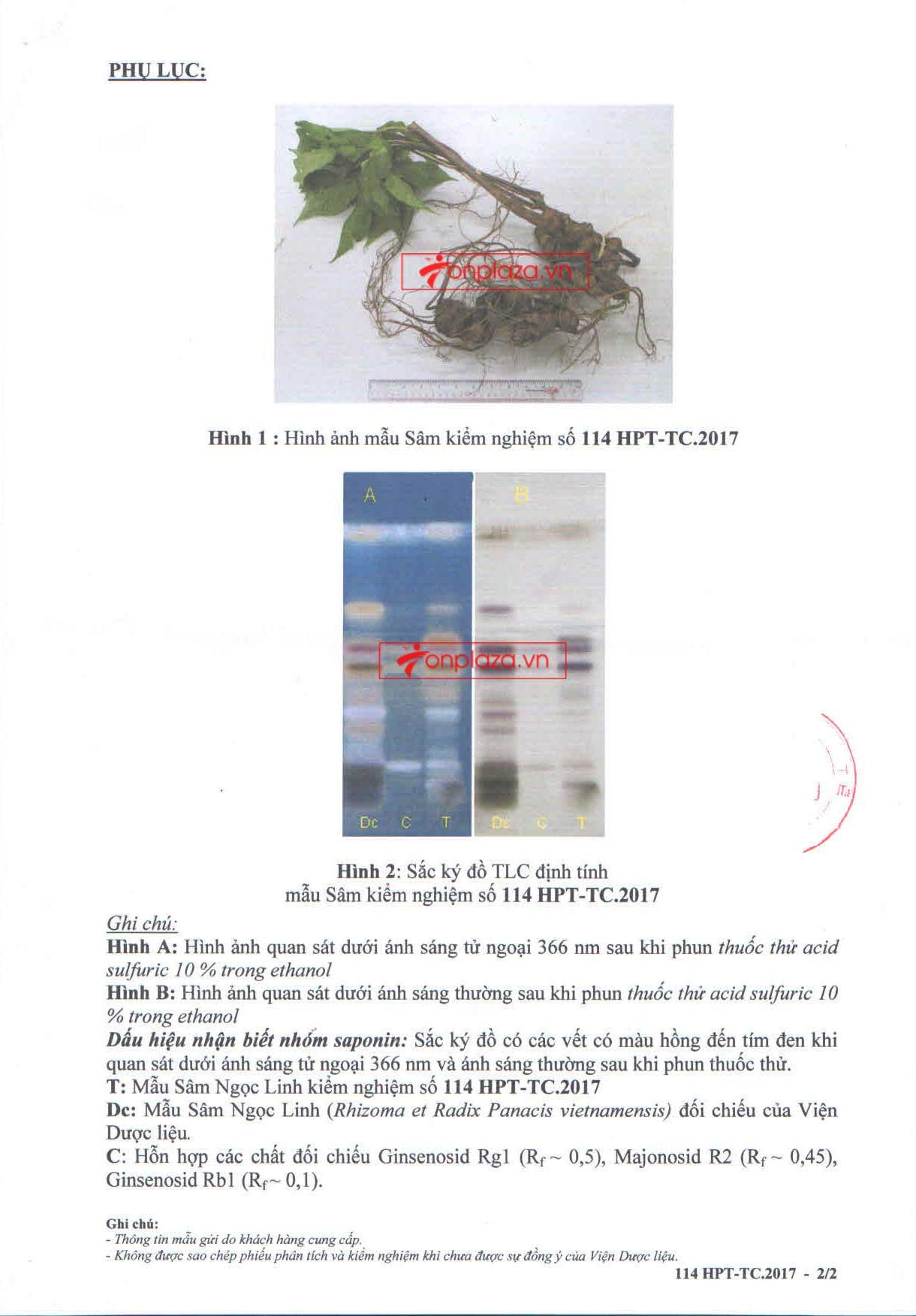 Kết quả kiểm nghiệm sâm  ngọc linh của onplaza Việt Pháp 2