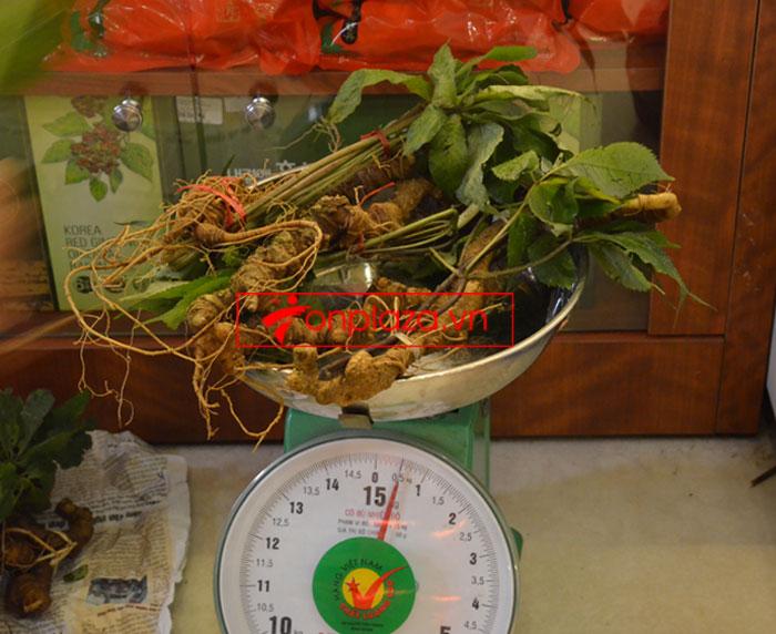 Sâm Ngọc Linh tự nhiên nguyên củ loại 10 - 20 củ/1kg 6
