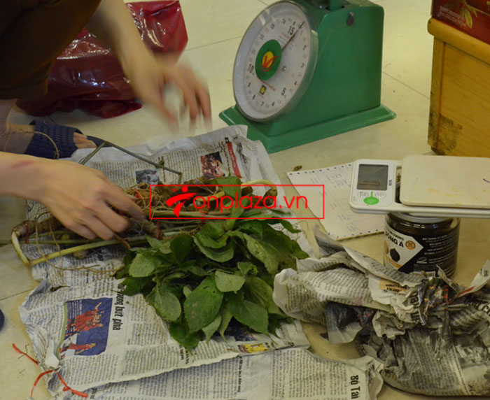 Sâm Ngọc Linh tự nhiên nguyên củ loại 10 - 20 củ/1kg 8