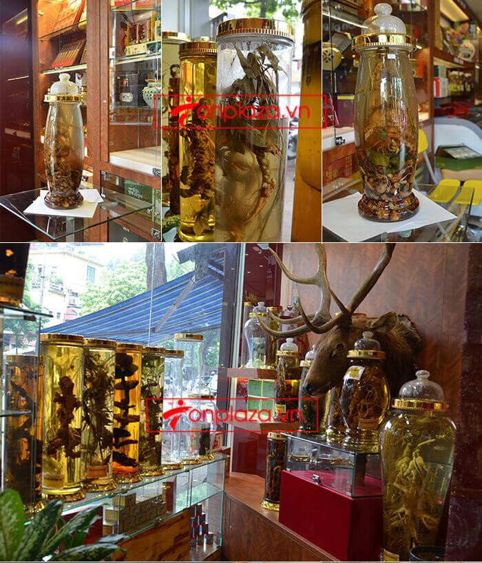 Một số mẫu sâm ngọc linh khác tại cửa hàng 4