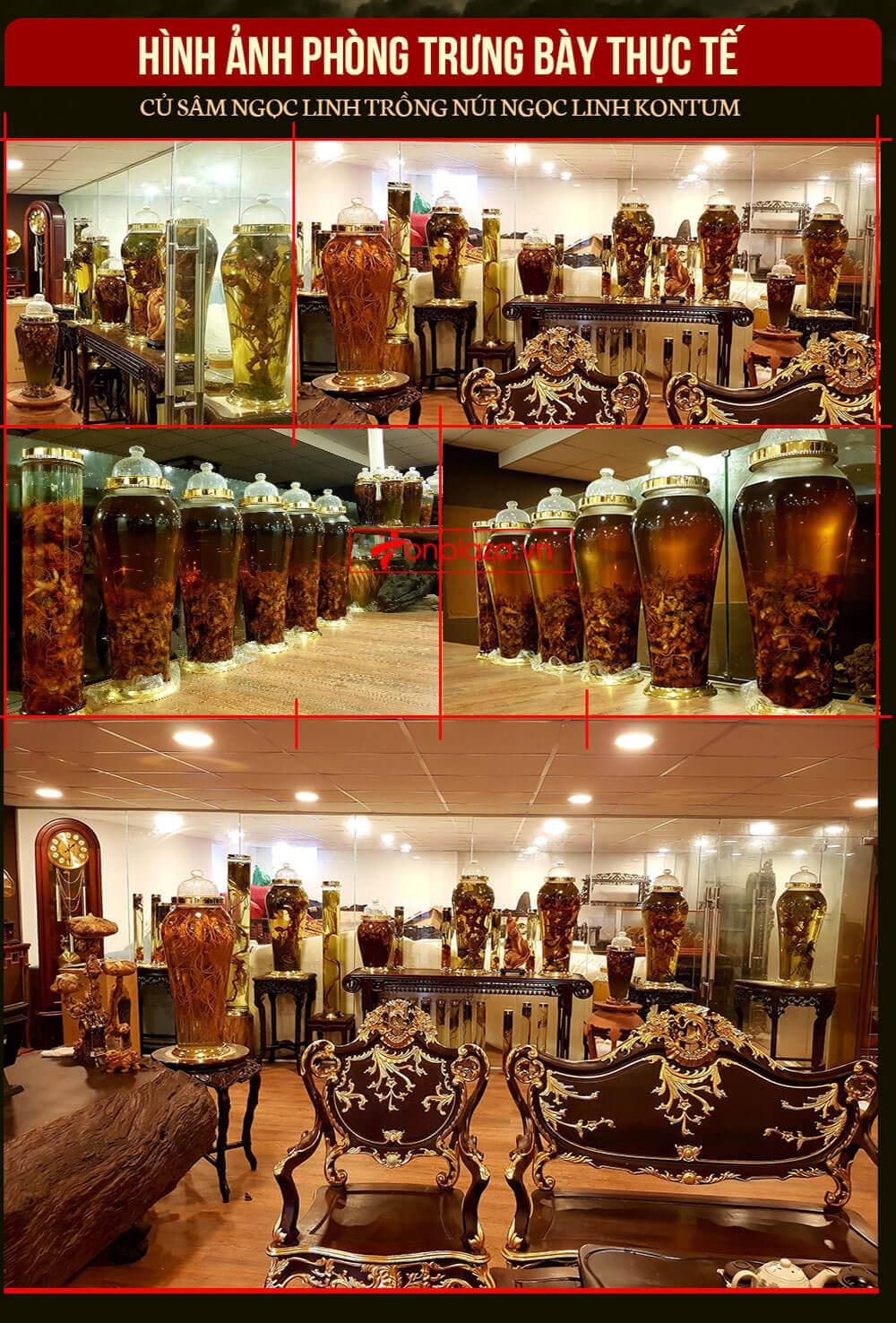 Hình ảnh phòng trưng bày bình rượu sâm ngọc linh của Onplaza