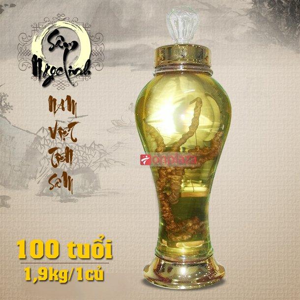 Bình sâm 100 năm tuổi (loại 2,1 kg/1 củ sâm)