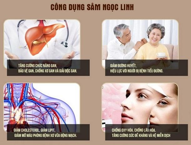 Sâm Ngọc Linh có công dụng tuyệt vời đối với sức khỏe