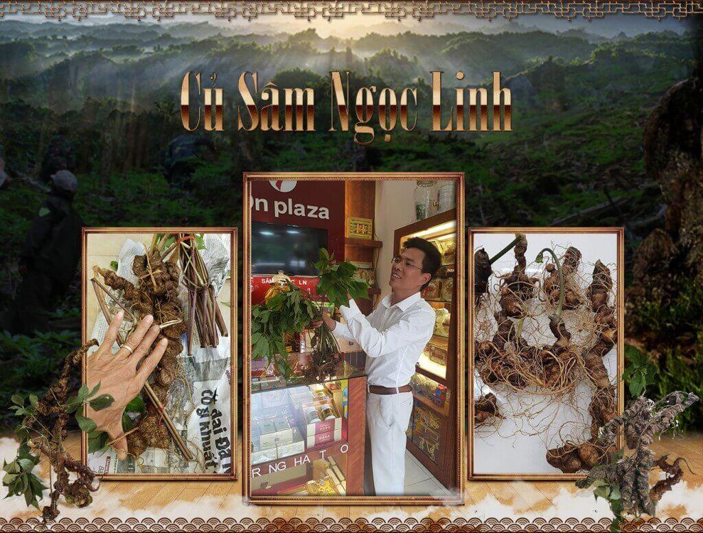 sam-ngoc-linh-2017