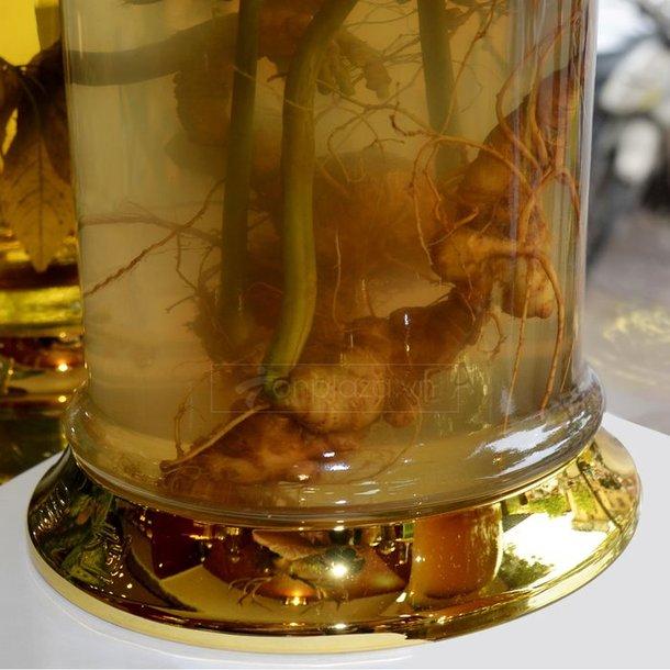 Bình rượu Sâm Ngọc Linh 16L 3