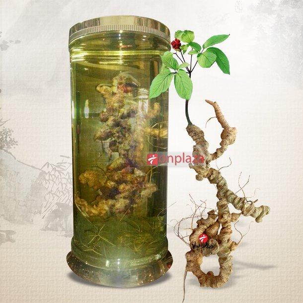 Bình sâm ngọc linh 100 năm tuổi (loại 1,9kg/1 củ) 1