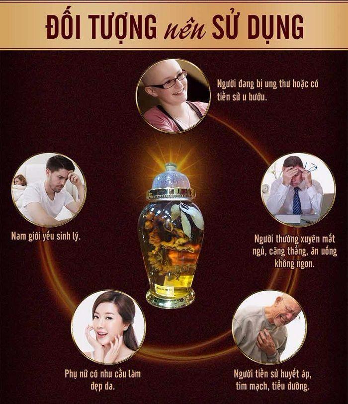 Đối tượng nên sử dụng bình ngâm rượu Sâm Ngọc Linh 16L