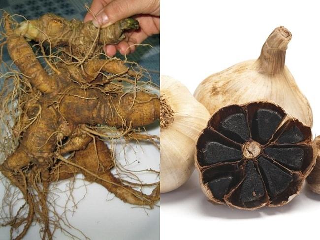 Sâm Ngọc Linh và tỏi đen là 2 dược thảo nổi tiếng được ưa chuộng hiện nay