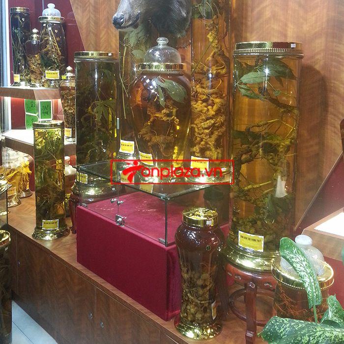 Các mẫu sâm và bình ngâm sâm ngọc linh hiện có tại cửa hàng 2