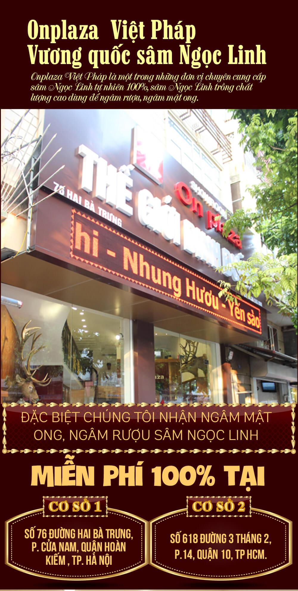 AD-huong-dan-ngam-ruou-sam-ngoc-linh-2_01