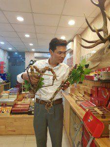 Anh Đào Văn Quang chia sẻ cách phân biệt sâm Ngọc Linh