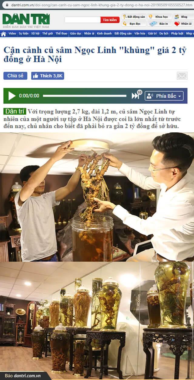 bo-suu-tap-sam-ngoc-linh-tu-nhien-cua-dai-gia-dao-van-quang_02