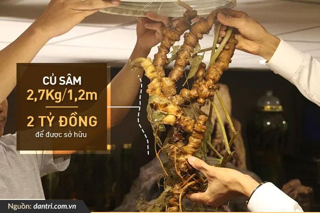 bo-suu-tap-sam-ngoc-linh-tu-nhien-cua-dai-gia-dao-van-quang_03