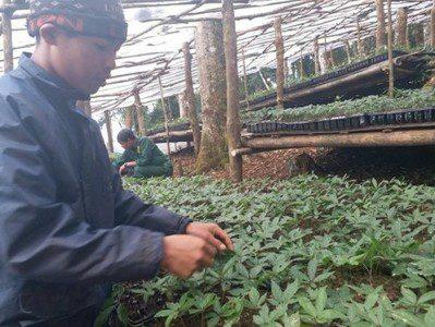 Công ty On Plaza Việt Pháp mang đến cơ hội việc làm mới cho người nông dân