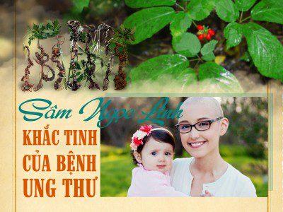 sam-ngoc-linh-khac-tinh-cua-benh-ung-thu