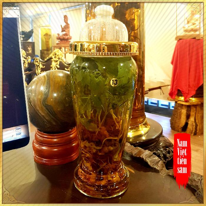 Bình sâm Ngọc Linh rừng cao cấp số 13 - 6 lít