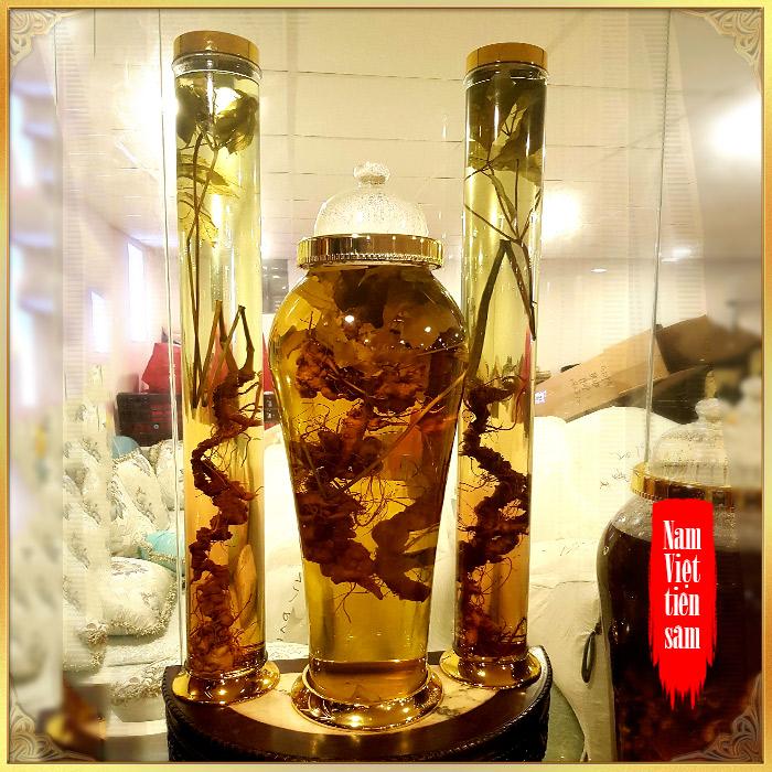 Bình sâm Ngọc Linh rừng 100% thượng hạng - 41 lít