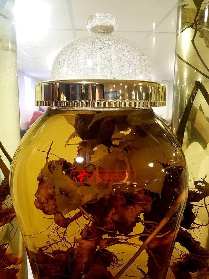Bình sâm Ngọc Linh rừng 100% thượng hạng - 41 lít 4